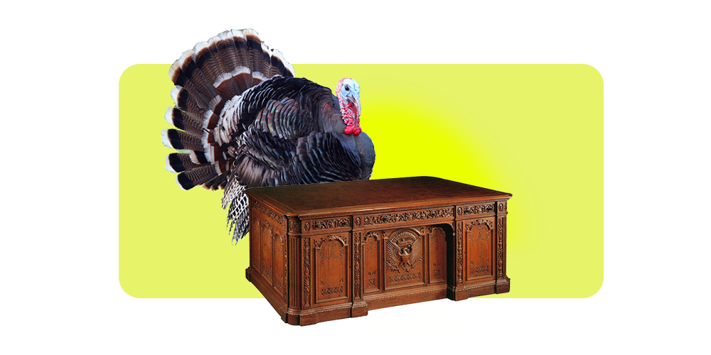 Talkin' Turkey